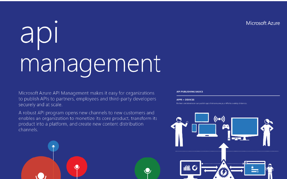 An Overview of Microsoft